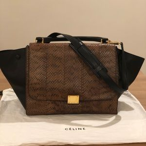 Celine Trapeze Python and Leather